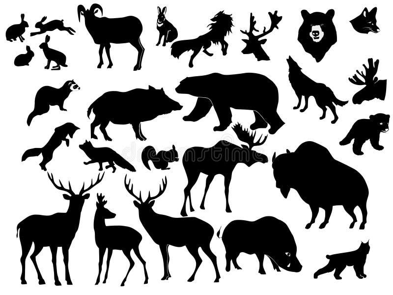 Inzameling van bosdieren royalty-vrije illustratie