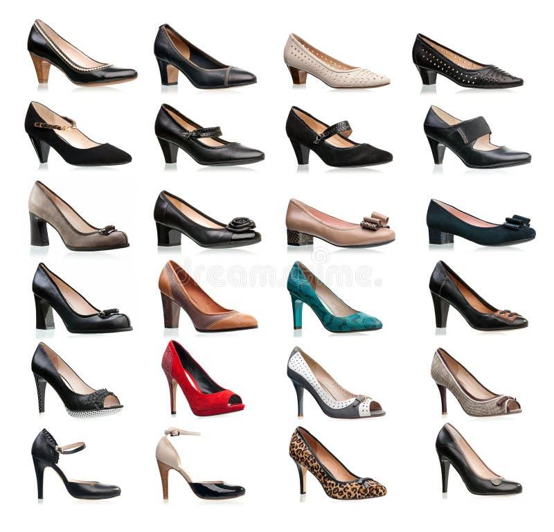 Inzameling van diverse types van vrouwelijke schoenen royalty-vrije stock fotografie