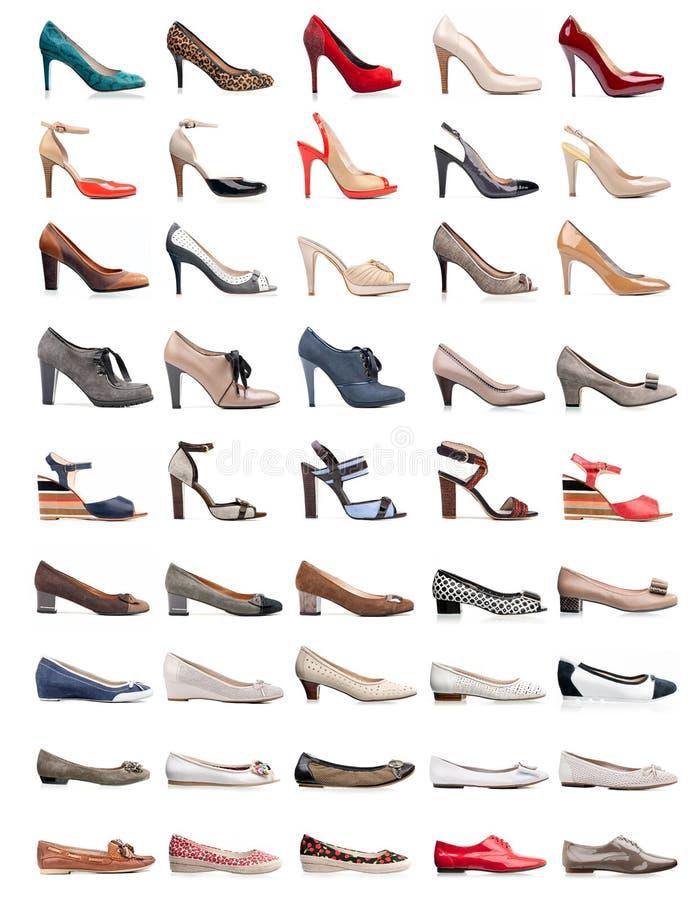 Inzameling van diverse types van vrouwelijke schoenen royalty-vrije stock foto