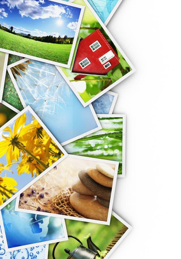 Inzameling van foto's stock foto's