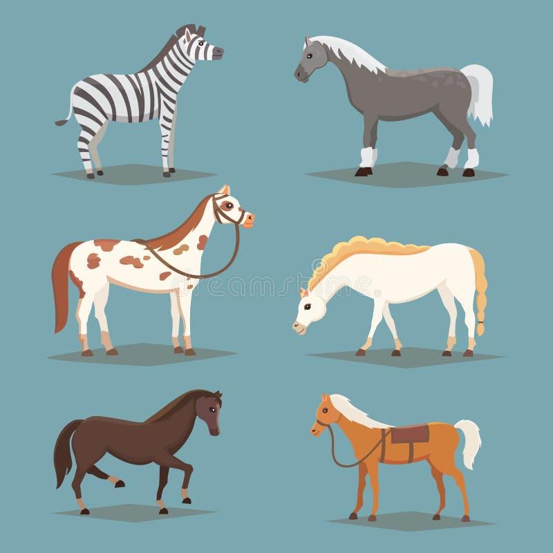 Inzameling van geïsoleerde paarden Leuke het landbouwbedrijfdieren van het beeldverhaalpaard Differendbroden vector illustratie