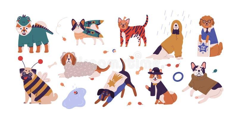 Inzameling van leuke honden van verschillende rassen die grappige kostuums dragen Reeks vermakelijke binnen geklede beeldverhaal  vector illustratie