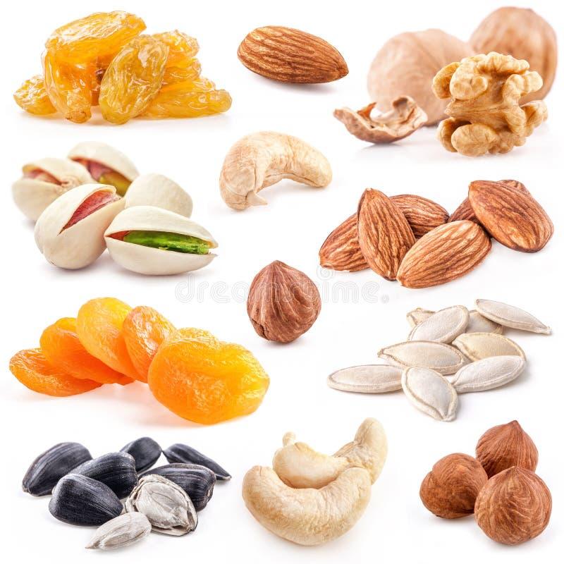 Inzameling van noten en droge vruchten royalty-vrije stock afbeeldingen