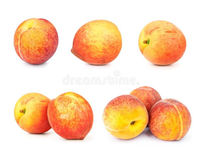 Inzameling van perziken stock foto