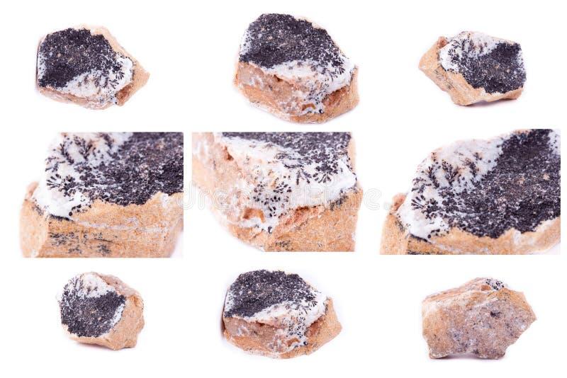 Inzameling van steen minerale Dendrieten van mangaanoxyden stock fotografie
