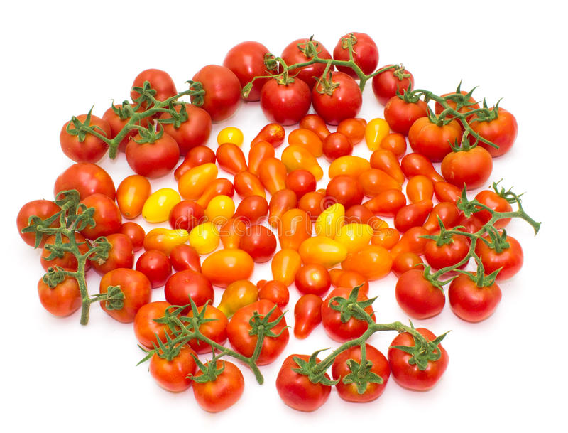 Inzameling van tomaten stock afbeelding