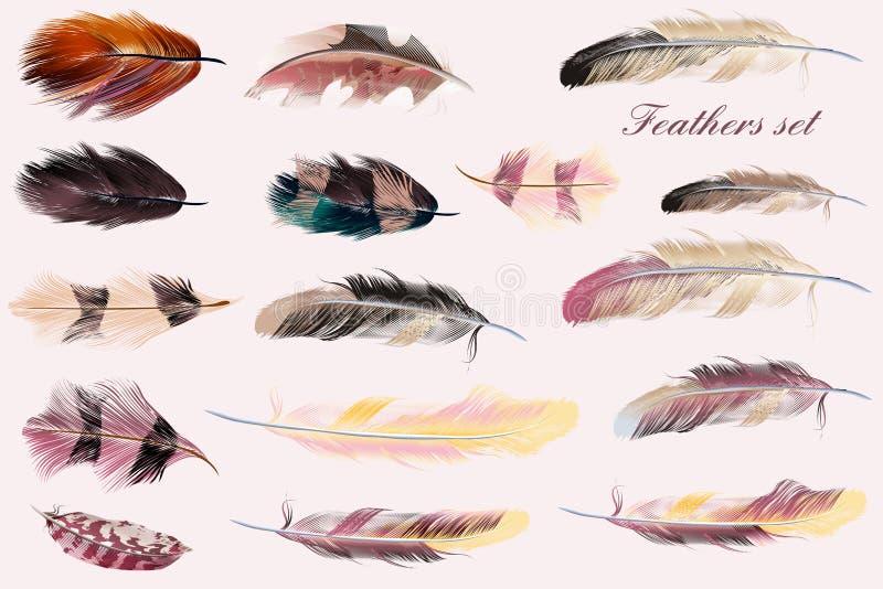 Inzameling van vectorveren in roze zachte kleuren Manierillus royalty-vrije illustratie