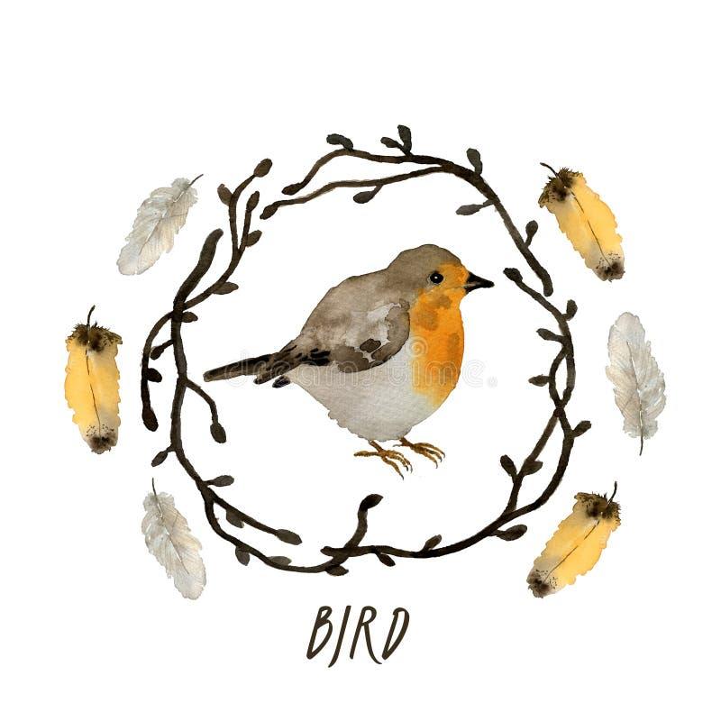 Inzameling van waterverfvogel Robin, takken, de lentetakjes en veren, illustratie in uitstekende stijl stock illustratie