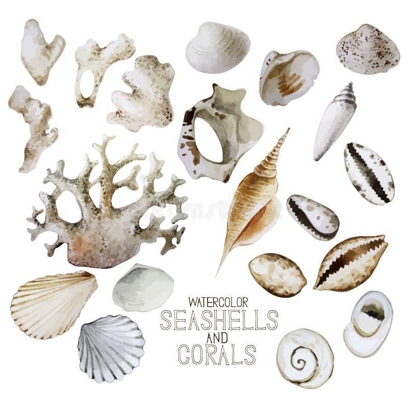 Inzameling van waterverfzeeschelpen en koralen royalty-vrije illustratie