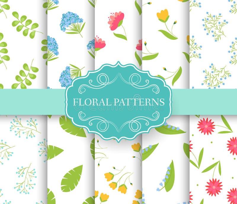 Inzamelingsreeks van bloemen naadloos patroon bladeren, de Lente, bloemen, de zomer, de Herfst met het concept van het etiketembl vector illustratie