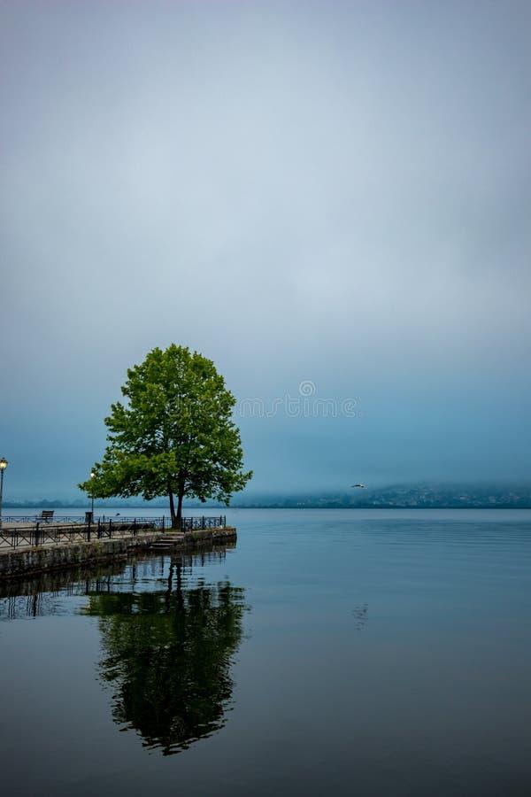 Ioannina, Griekenland, meerochtend met mistbezinningen stock fotografie