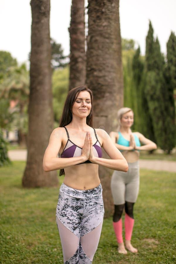 Ioga da manhã Grupo de jovens mulheres que exercitam no parque foto de stock