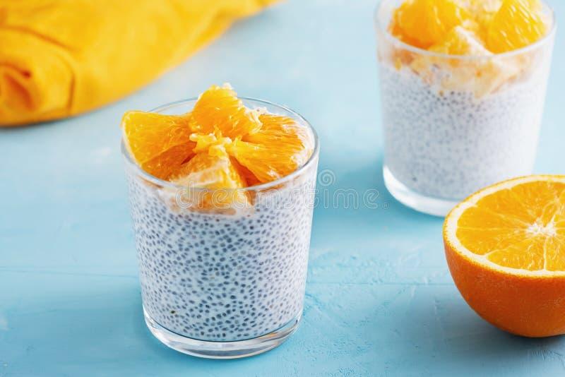 Iogurte grego com Chia Seeds Healthy Breakfast imagem de stock royalty free