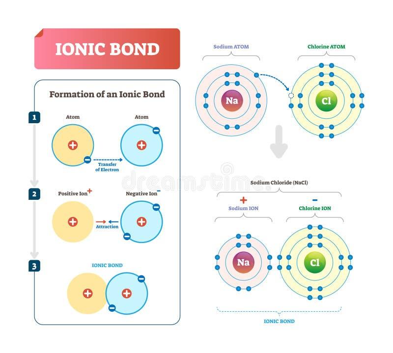 Ionenbindungsvektorillustration Beschriftetes Diagramm mit Bildungserklärung lizenzfreie abbildung