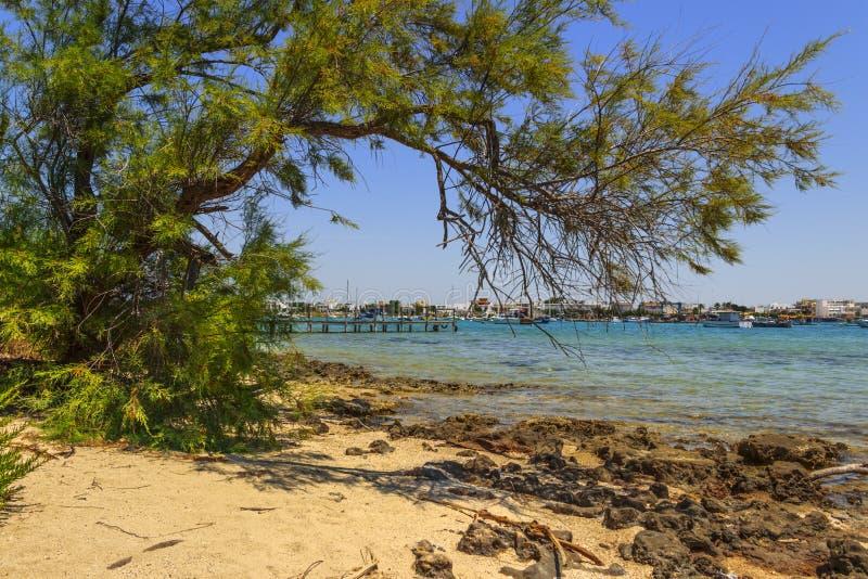 Ionian kust av Salento: Porto Cesareo Lecce - ITALIEN Apulia - royaltyfri foto