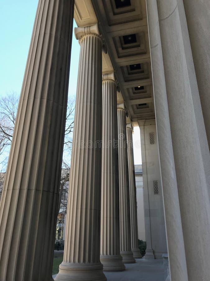 Ionische Kolommen bij MIT stock foto
