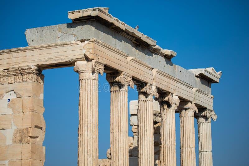Ionische kolommen van Erechtheum in de Akropolis van Athene stock afbeeldingen