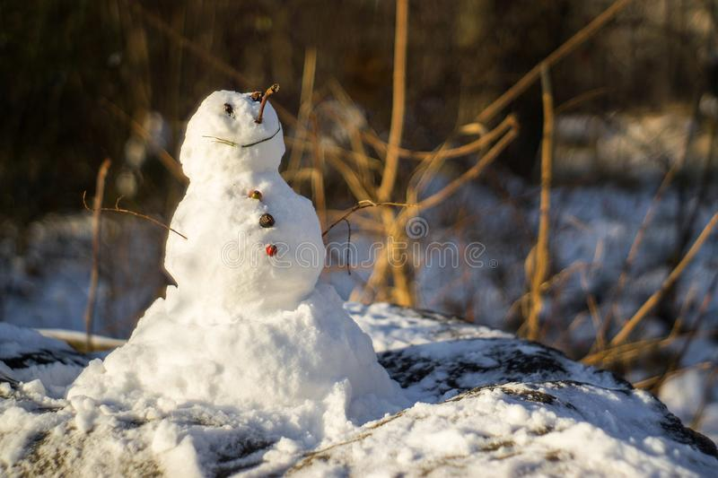 IOR Park. Happy and small snowman in IOR Park during a freezing morning stock images