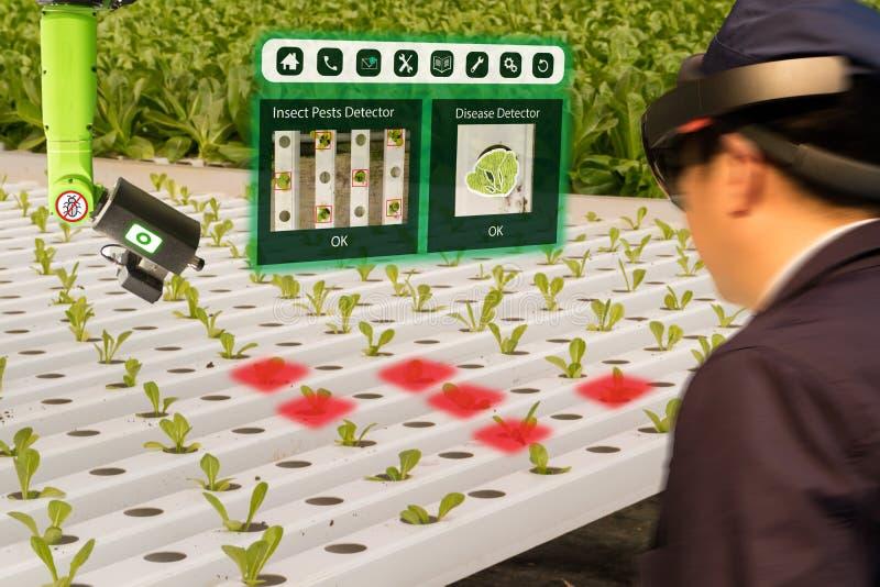 Iot巧妙的产业机器人4 0个农业概念,农艺师, farmerblurred使用聪明的玻璃增添了混杂的虚拟现实, a 免版税库存照片
