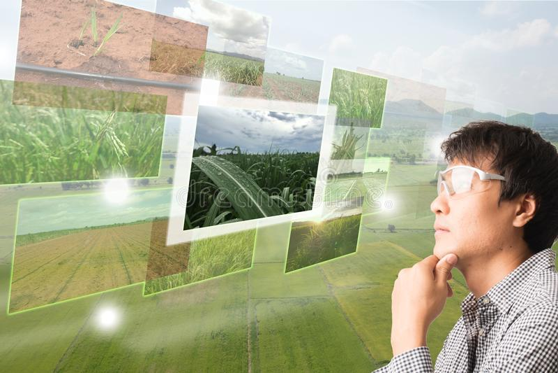 Iot, internet thingsagriculture pojęcie, mądrze uprawiać ziemię, indust fotografia stock
