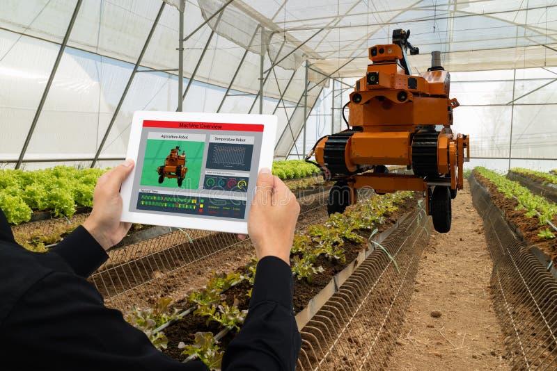 Iot przemysłu mądrze robot 4 (0) rolnictw pojęć, przemysłowy agronom, rolnik używa oprogramowanie Sztucznej inteligenci technolog obrazy royalty free