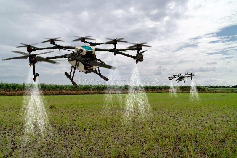 Iot smart åkerbruk bransch 4 0 begrepp, surr i precisionlantgårdbruk för sprej ett vatten, gödningsmedel eller kemikalie till fäl royaltyfria foton