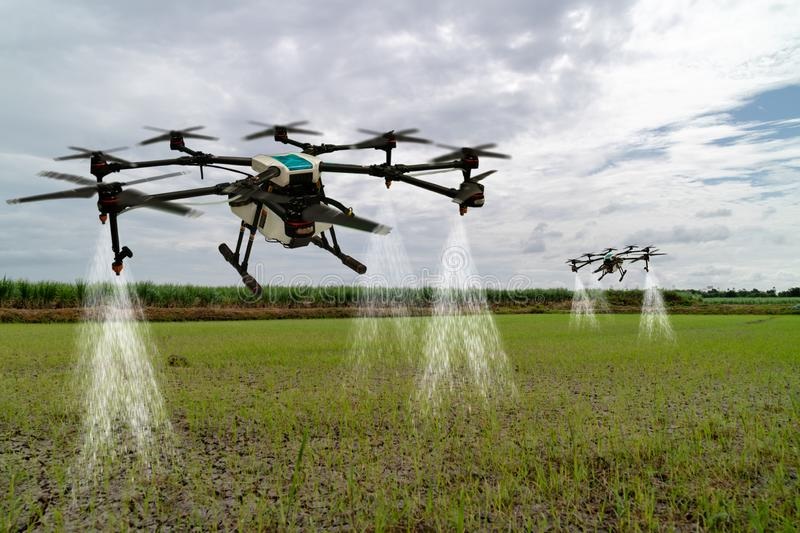 Iot smart agriculture industry 4.0 concept, drone in precision farm use for spray a water, fertilizer or chemical to the field, royalty free stock photos