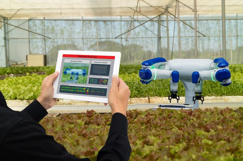 Iot smart industry robot 4.0 agriculture concept,industrial agronomist,farmer using tablet to monitor, control the condition in ve stock photos