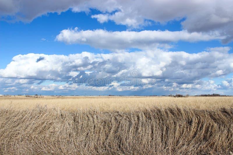 Iowa chmury obraz royalty free