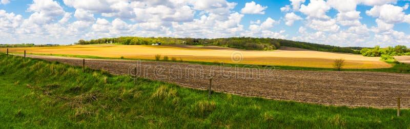 Iowa jordbruksmarkpanorama royaltyfria bilder
