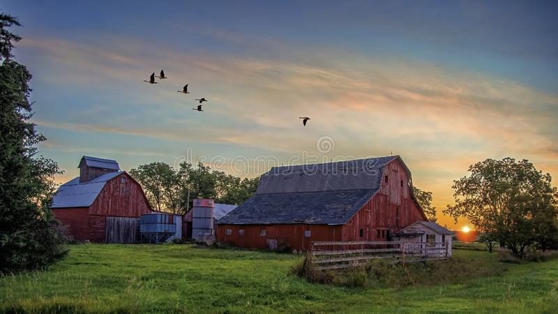 An Iowan Summer Morning stock photography