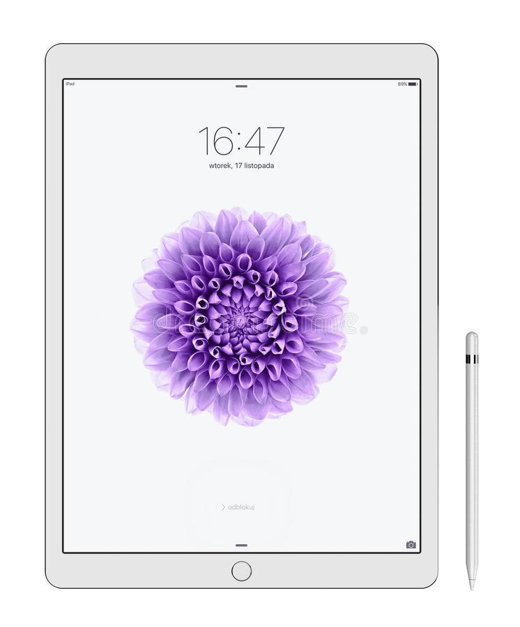 IPad d'Apple pro images libres de droits
