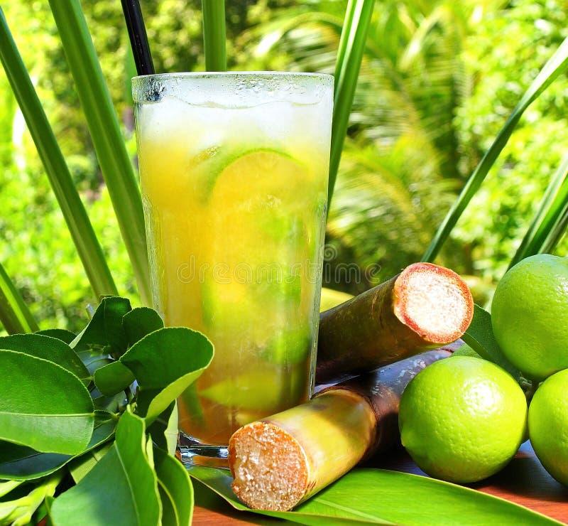 Ipanema - cóctel no alcohólico en un área tropical foto de archivo