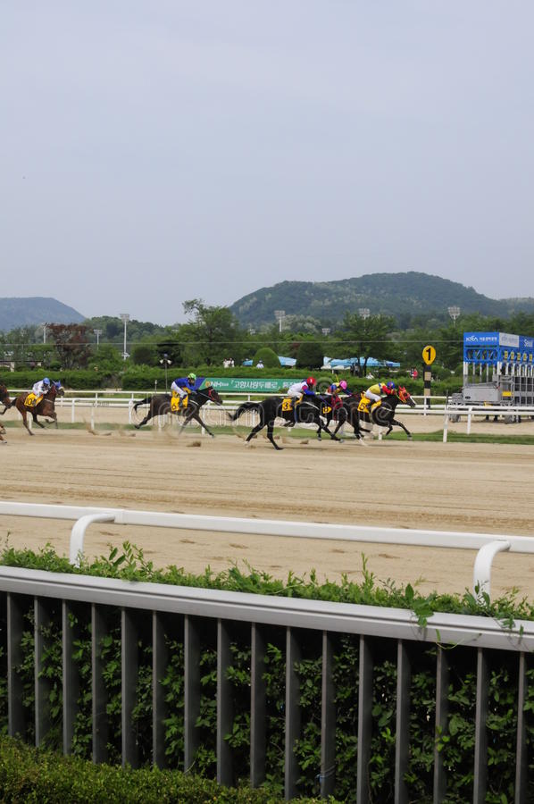 Ippodromo di Seoul, Seoul, Corea fotografie stock
