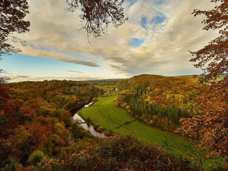 Ipsilon del fiume in Autumn Colours immagine stock libera da diritti
