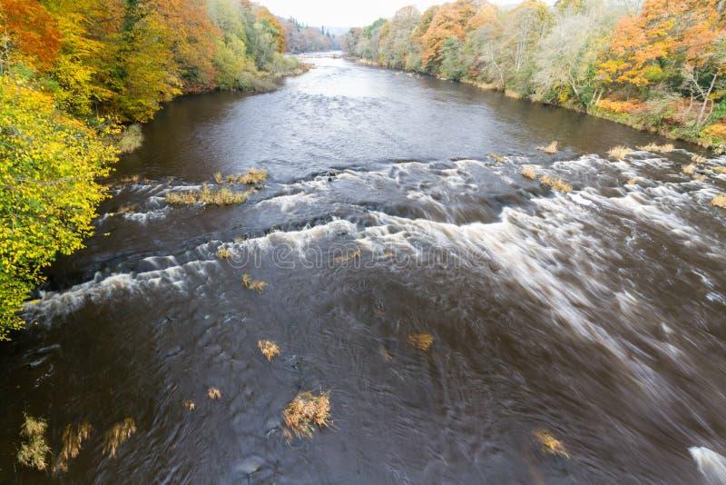 Ipsilon del fiume in autunno immagini stock libere da diritti