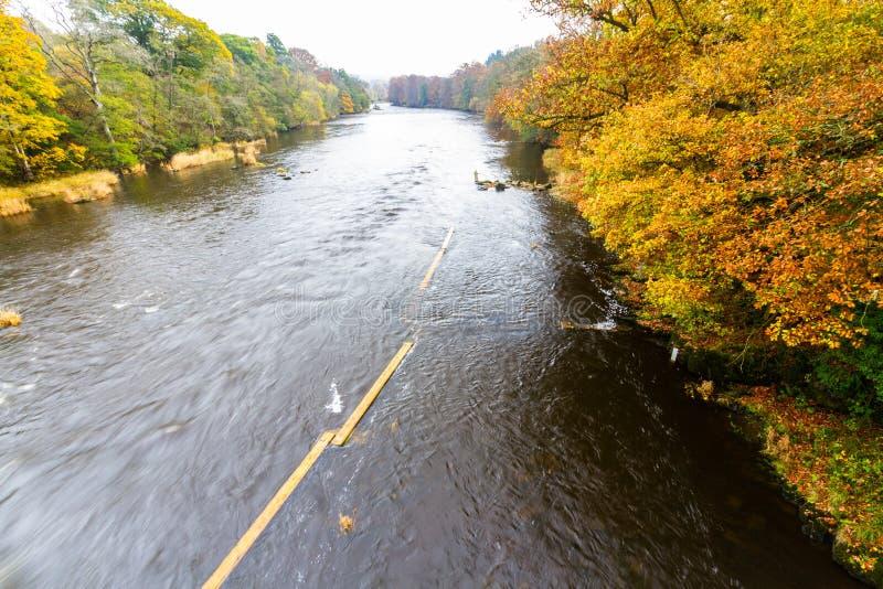 Ipsilon del fiume in autunno immagine stock libera da diritti