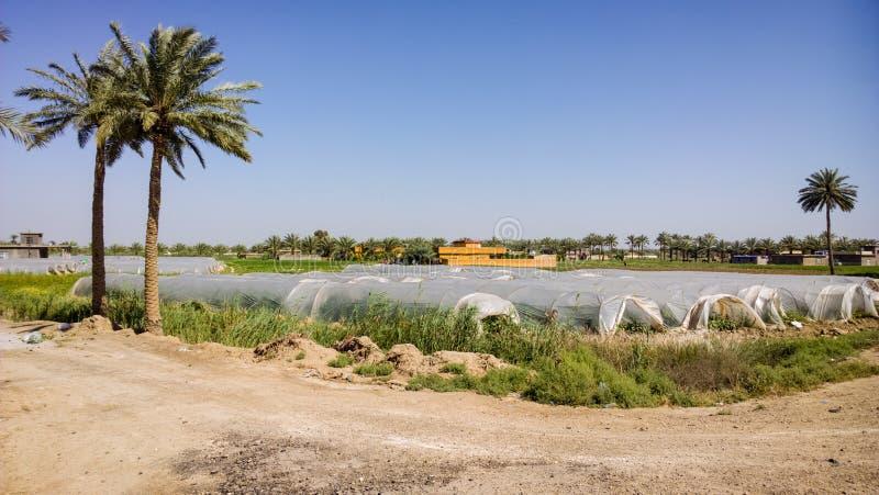 Irakijska wieś obraz stock