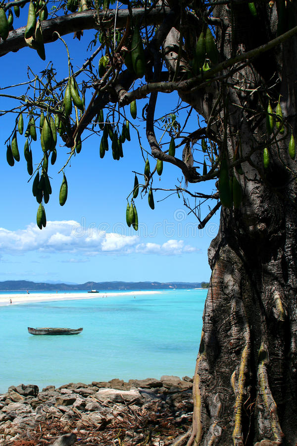 Iranja Nosy Madagascar fotos de stock royalty free