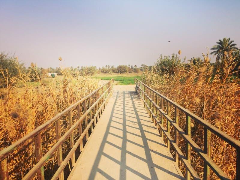 Iraque, Bagdade fotos de stock royalty free