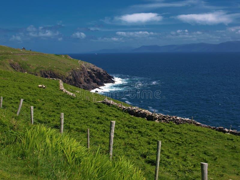 Download Ireland Krajobrazowego Seacape Wibrujący Zachód Zdjęcie Stock - Obraz złożonej z krajobraz, trawy: 13330484