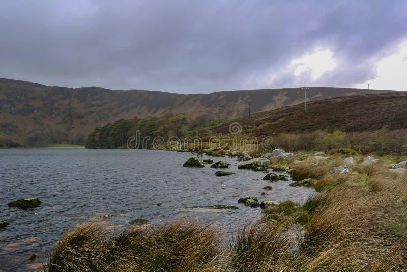 ireland lake berg natur royaltyfri bild