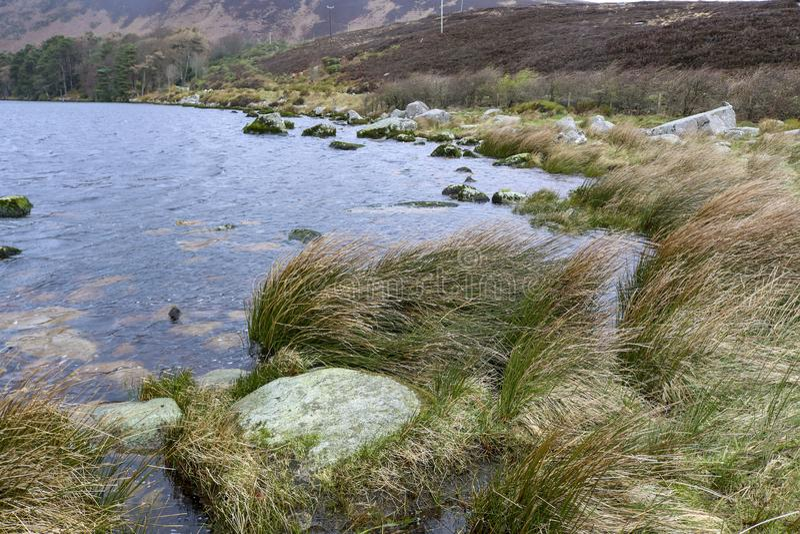ireland lake berg natur fotografering för bildbyråer