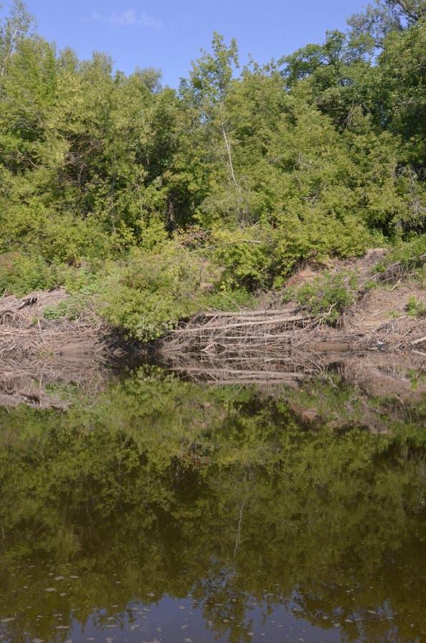 Irgiz-Flussbank-Sommertag lizenzfreie stockfotos