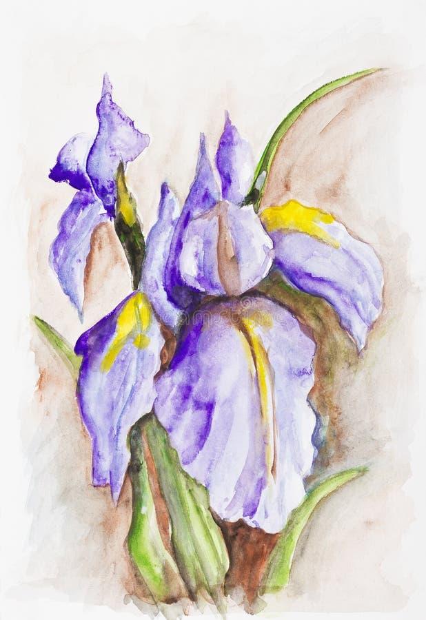Irida i fiori blu su marrone royalty illustrazione gratis