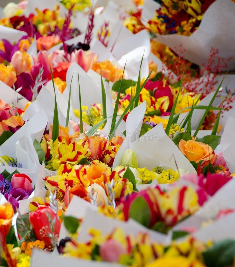 Iridi e tulipani in mazzi nel mercato dell'agricoltore di Redmond fotografia stock