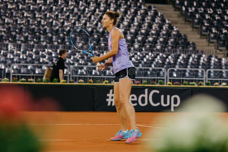 Irina Begu training at Fed Cup 2018 Romania royalty free stock image