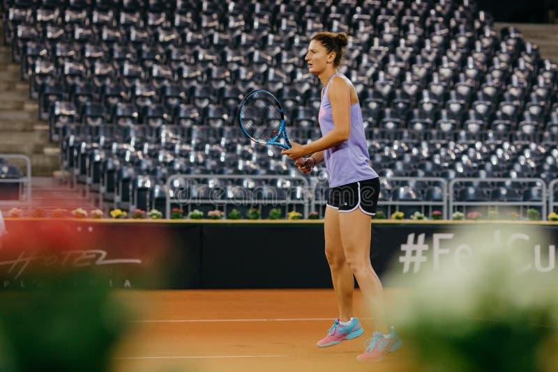 Irina Begu utbildning på Fed Cup Rumänien 2018 royaltyfria foton