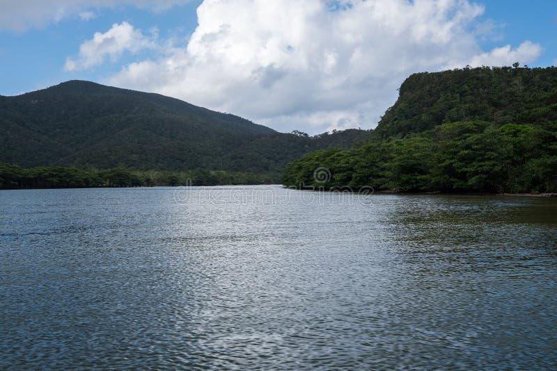 Iriomote-Inselansicht vom Boot lizenzfreies stockfoto