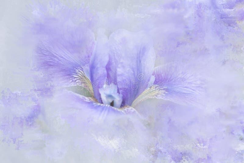 Iris abstrait avec l'effet painterly photo libre de droits